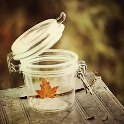 Pandora's Autumn II by nairafee