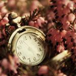 Time's Perfume