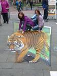 Tiger, Geldern 2010