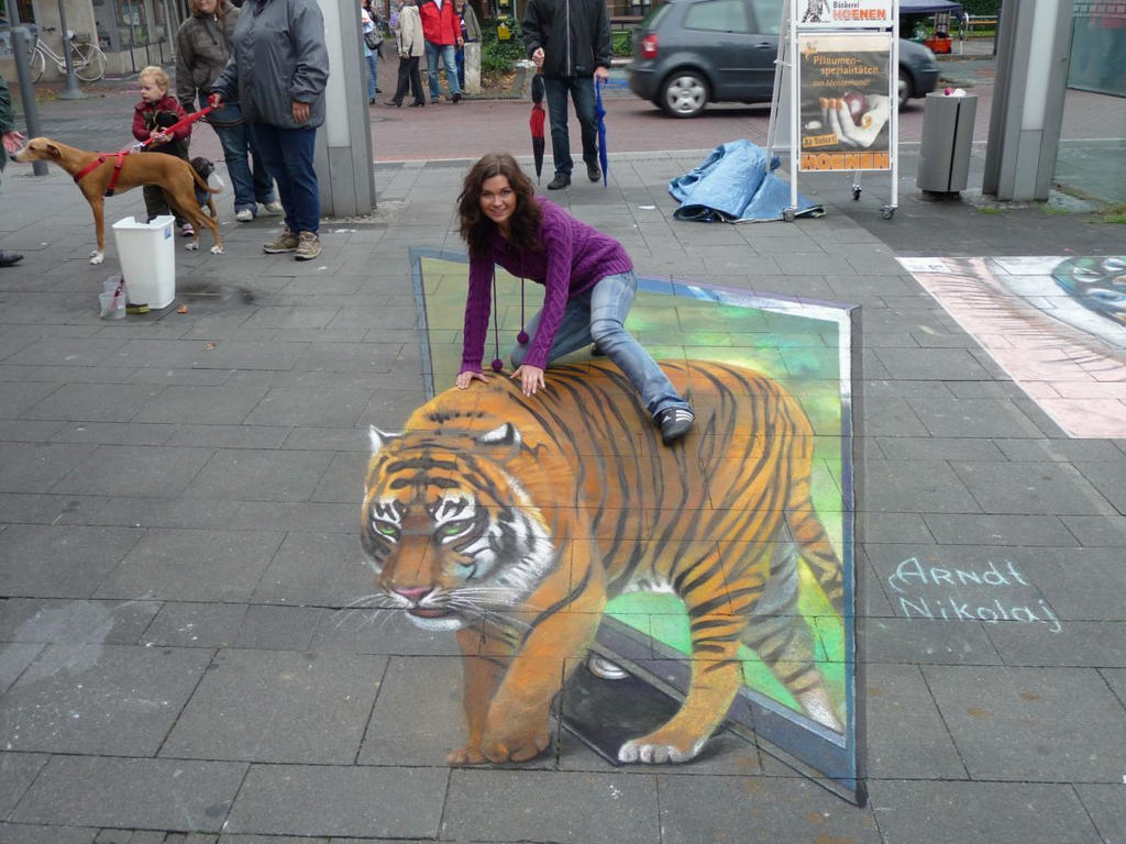 Very Clever Street Art That Tiger Looks Real The Woman Helped To