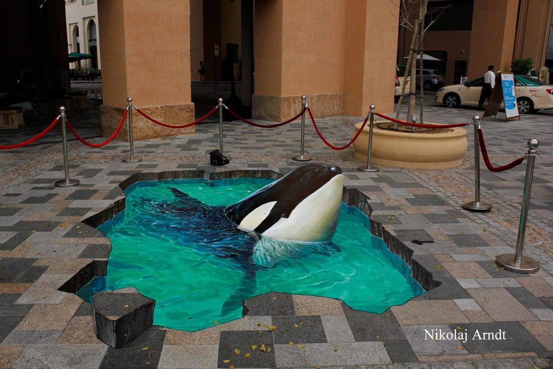 Orca by Nikolaj-Arndt