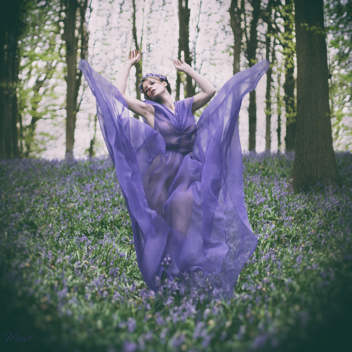 Dance of the bluebell by Muse1908
