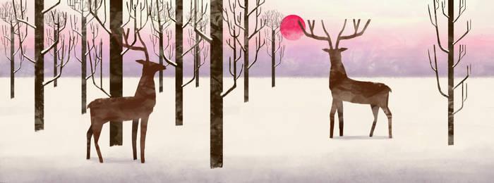 Winter sun by Valerie-V