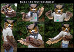 Bubo the Owl Partial
