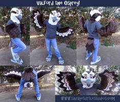 Valeford the Osprey by JakeJynx