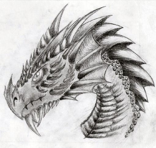 dragon head by nike2000 on DeviantArt