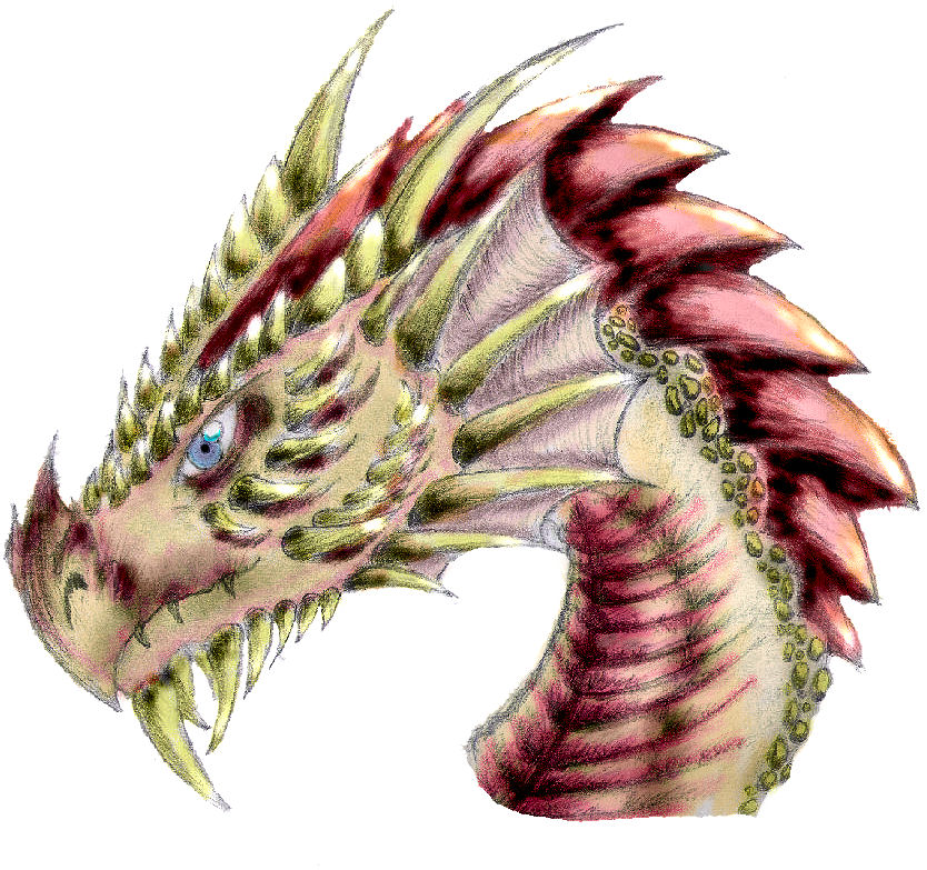 Dragon Head Stage 5 Colored By Nike2000 On Deviantart