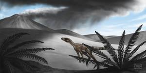 Marasuchus lilloensis