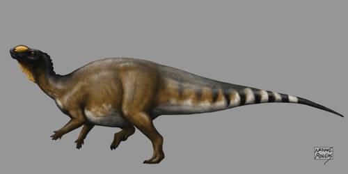 Muttaburrasaurus langdoni by MicrocosmicEcology