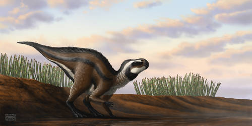 Early Rhabdodontid of Lower Cretaceous Europe