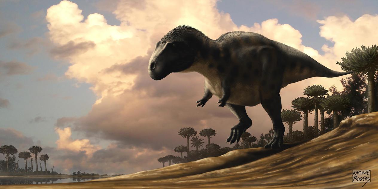 Acrocanthosaurus atokensis by MicrocosmicEcology