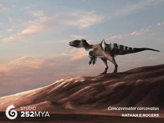Concavenator corcovatus by MicrocosmicEcology