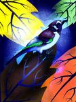 Bird of Dreams