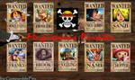 Wanted Mugiwara Pirates