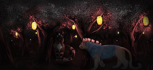 Lantern glow | SAF 19