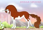 Boucle Unicorn Import V500