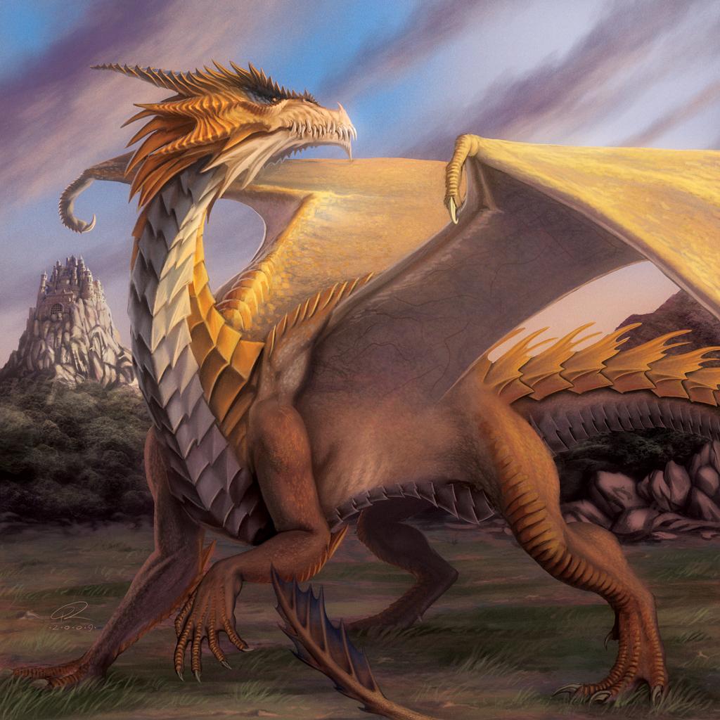 Dragon by Akeiron