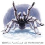 Snow Spider