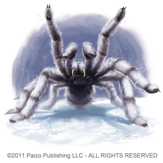 Snow Spider by Akeiron