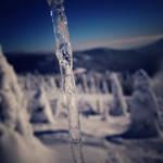 Frozen-solid