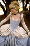 Cinderella Closeup