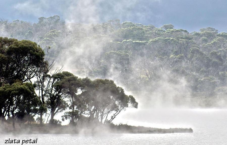 foggy  lake by Zlata-Petal