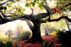 art tree by Zlata-Petal
