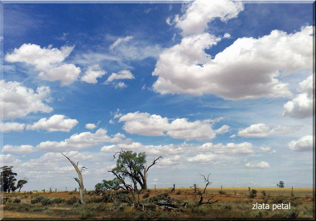 Sa landscape by zlata petal on deviantart for Sa landscaping