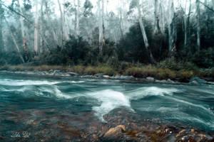 wild wild river by Zlata-Petal