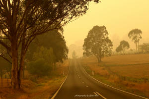 On the smoky road by Zlata-Petal