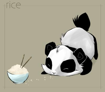 Cute Little Panda By Lola44470