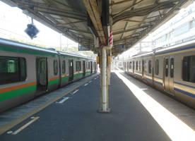 Yokosuka and Shonan-Shinjuku Trains Meet at Zushi by rlkitterman