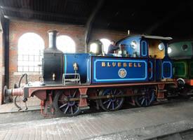 Bluebell by rlkitterman