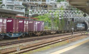JR Freight EF66.115 Entering Makinohara Tunnel
