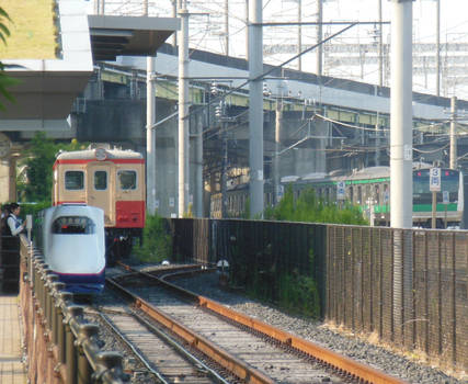 Teppaku Line Train, Kiha1125 and Saikyou E233.7xxx