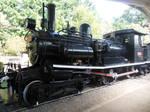 Piten at Ome Railway Park