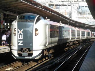 Narita Express Ne018 at Yokohama