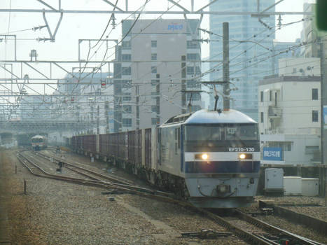 JRF EF210.130 Container Train in Shizuoka