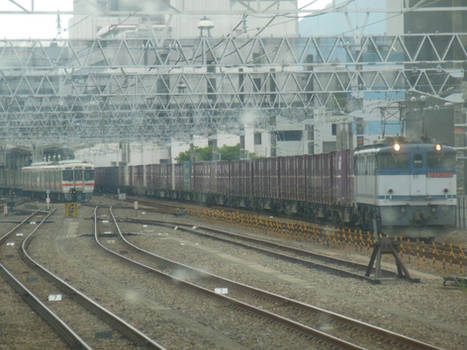 JRF EF65.2089 Container Train in Shizuoka