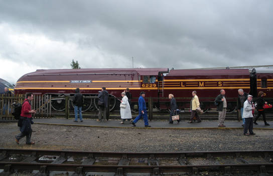 Duchess of Hamilton at Railfest 2012 DSCN6525