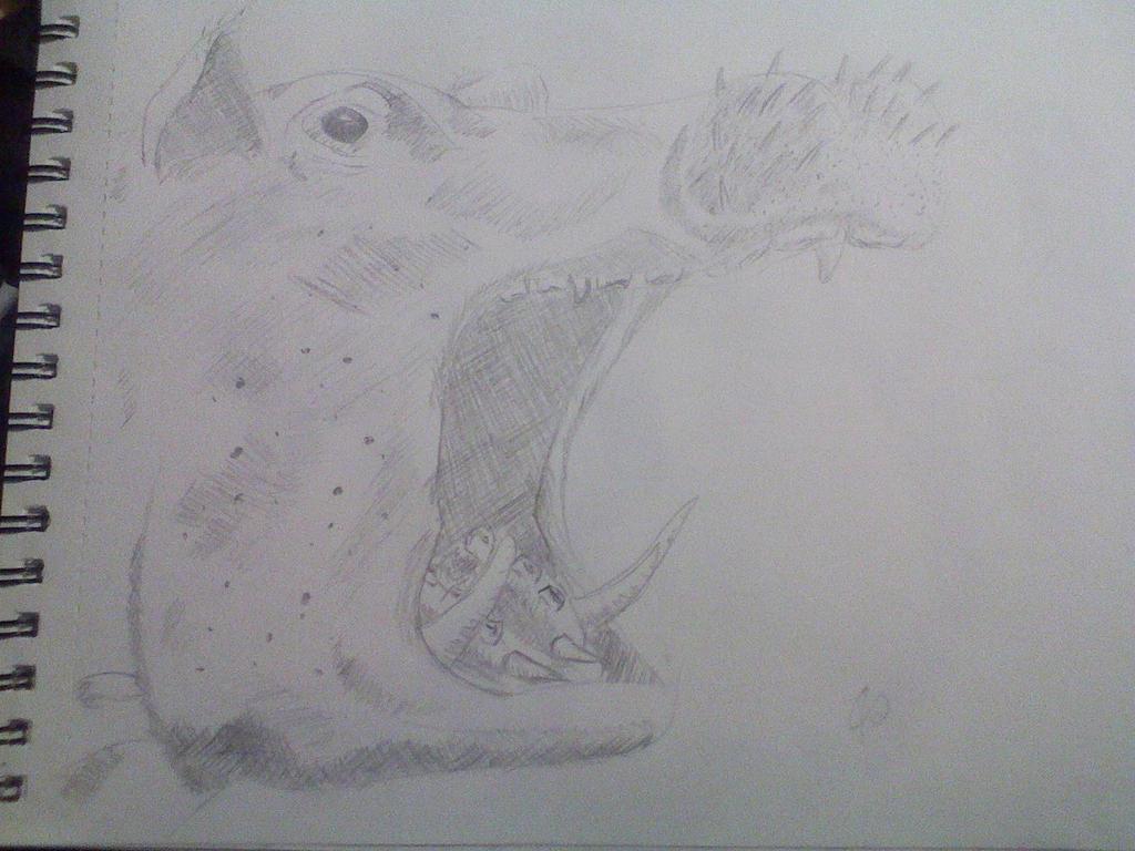 Hippo by Kuejena