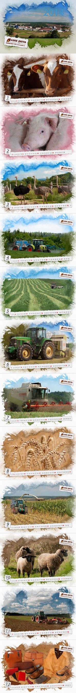 Wall calendar for Fadis Osiva