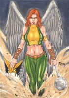 Hawkgirl by Fredbenes