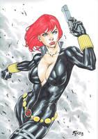 Black Widow 03 by Fredbenes