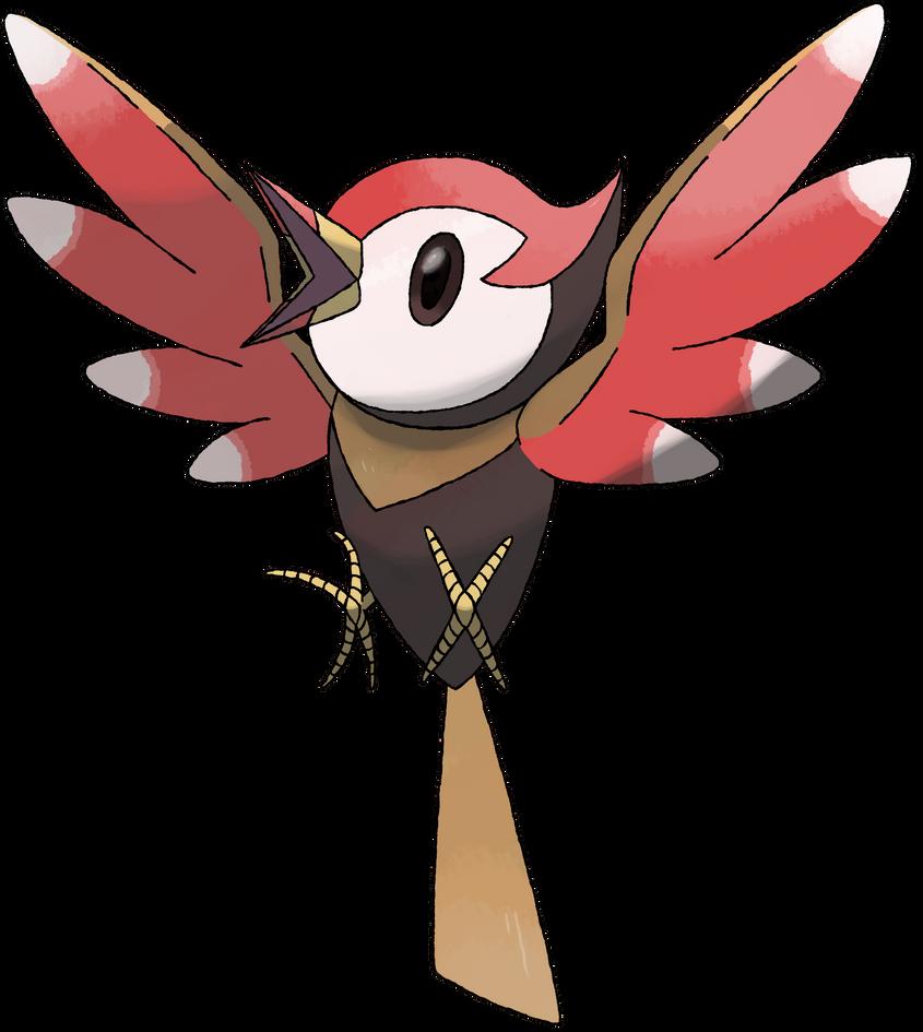 pokemon bird names images pokemon images