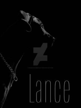 Lance, Black