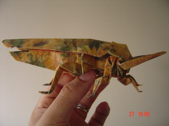 origami instructions art and craft ideas: origami grasshopper ... | 480x640