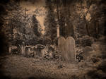 Old Jewish Cemetery in Wroclaw (Poland)