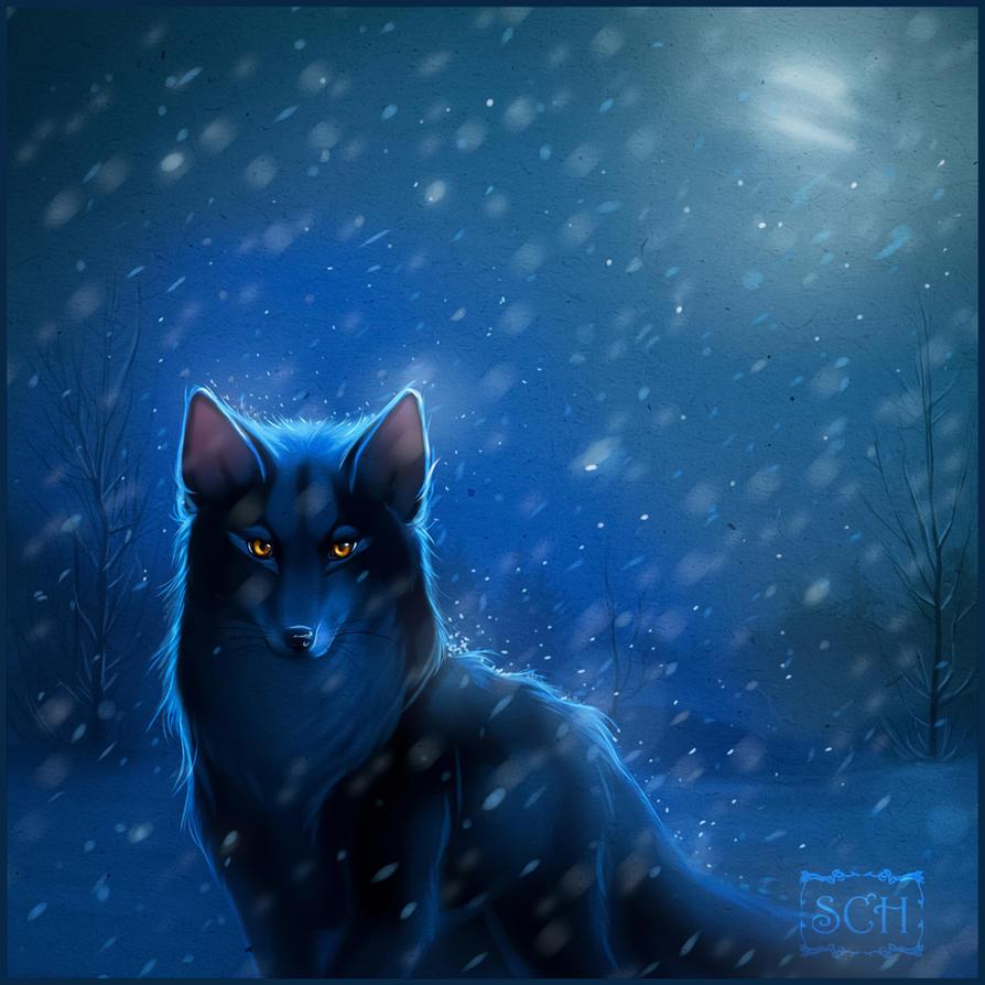 Cold night by Krrrokozjabrra