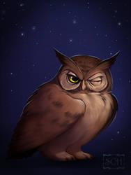 It's time to sleep. by Scheadar